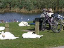 cyclists taking a break along the Par Beach to Eden Project trail